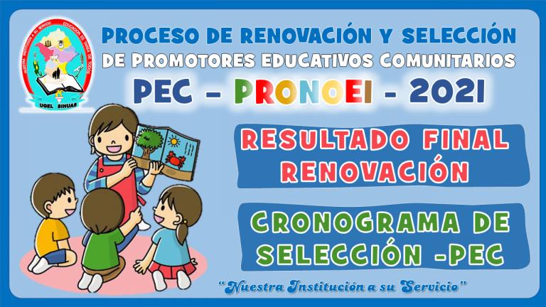 PROCESO DE RENOVACION Y CONTRATO DE PEC PRONOEI 2021